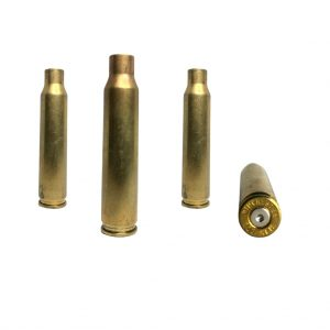 223 Brass once fired